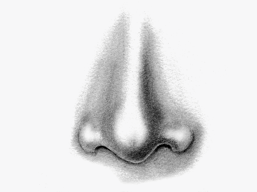 Nose prostheses